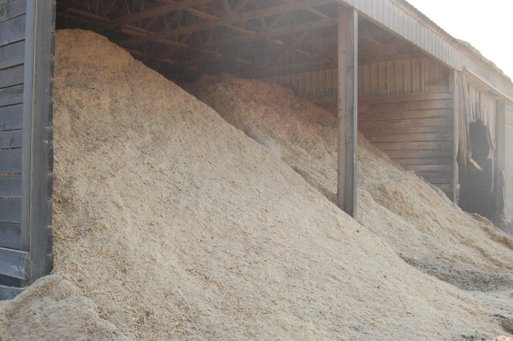 Sawdust bedding